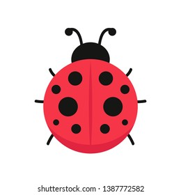 ladybug vector. ladybug on white background. wallpaper. symbol.