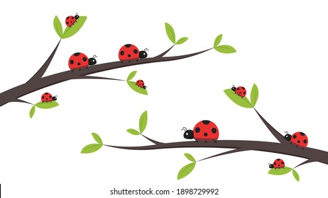 Ladybug vector. ladybug on white background. wallpaper. tree stick vector. Ladybug insects on the branches.