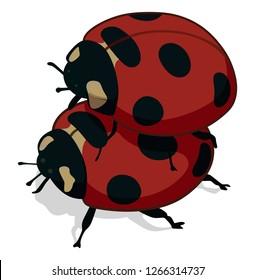Sex ladybug Miraculous Ladybug