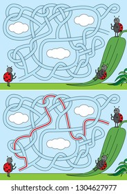 Ladybugs on a slide maze for kids with a solution