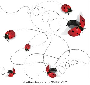 Ladybugs on white background-transparency blending effects and gradient mesh-EPS 10.