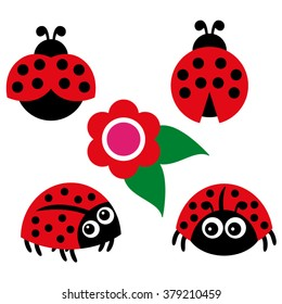 Ladybugs vector.