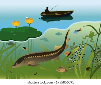 A lake with freshwater fish, animals, insects, aquatic plants, flowers and a fisherman in a boat.