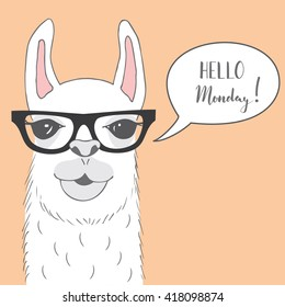 Lama Alpaca with color background. Hipster Animal Vector illustration. Hello monday card with call-out sign.