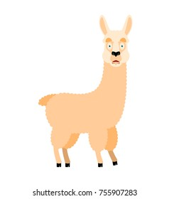 Lama Alpaca scared OMG. Animal Oh my God emoji. Frightened beast. Vector illustration
