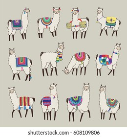 lama animal vector color set
