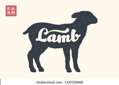 Lamb. Lettering, typography. Animal silhouette sheep or lamb and lettering Lamb. Creative graphic design for butcher shop, farmer market. Vintage poster for meat related theme. Vector Illustration