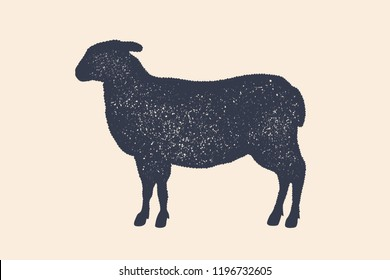 Lamb, sheep. Vintage logo, retro print, poster for Butchery meat shop, sheep silhouette. Logo template for meat business, meat shop. Isolated silhouette sheep, white background. Vector Illustration