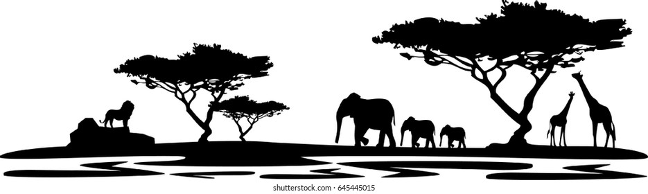 landscape africa lion