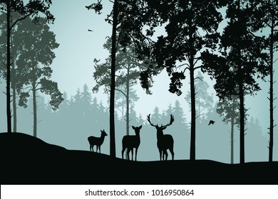 Landscape with green forest, deer and flying birds - vector