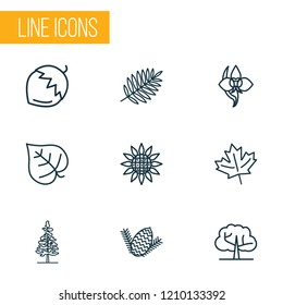 Landscape icons line style set with hazel nut, sunflower, elm tree and other lush elements. Isolated vector illustration landscape icons.
