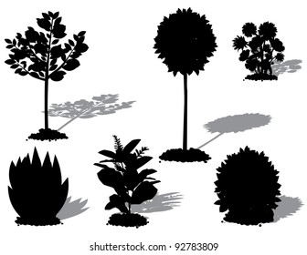 Landscape Plant Silhouettes EPS 8 vector, grouped for easy editing, no open shapes or paths.