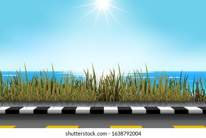 landscape of road at the beach in day time