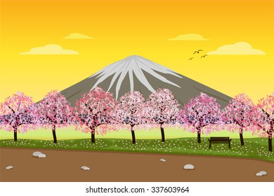 Landscape of Sakura Cherry Blossom tree in Lakeside Park in Evening with Mount Fuji in the background. vector