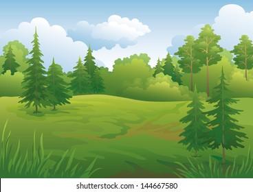 Landscape: summer green forest and blue sky. Vector illustration