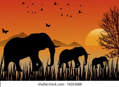 Landscape at Sunset with African elephants and flocks of birds and butterflies