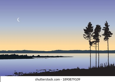 Landscape vector illustration, beautiful nature with silhouette of pine trees on lake shore in the evening. Scandinavian summer night outdoors. Camping in Swedish archipelago, calm river background