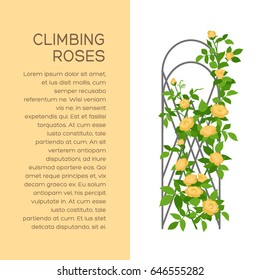 Landscaping and gardening banner, poster or brochure template with flat style illustration of flowers and place for text. Creepers colored icon. Vertical gardening sign. Outdoor decor element.