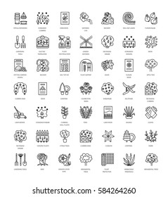 Landscaping and gardening. Vector line icon set. Plant, tree, shrubbery, lawn, rose, climber, rockery, conifer.  Elements for backyard or front yard design with flowers, shrubs. Ornamental garden.