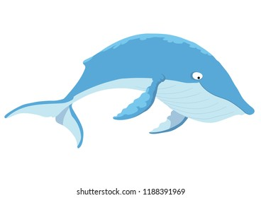 A large blue whale, swimming