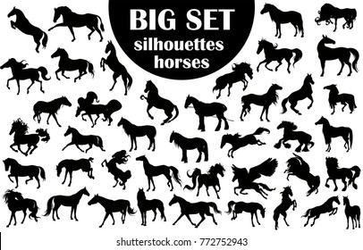 A large collection of horse silhouettes.