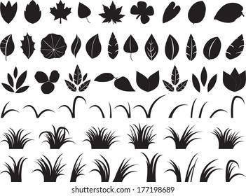 Large collection of leafs and grass illustrated on white