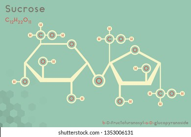 Large and detailed infographic of the molecule of Sucrose.