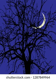 Large ebony at night on the background of the new month. Night landscape: ebony, dark blue sky, and the moon.