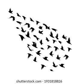 A large flock of flying birds. Free birds. Vector illustration