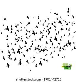 A large flock of flying birds. Vector illustration