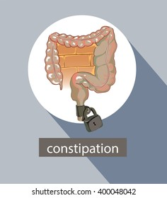 Large intestine info graphic design. Bowel. Constipation.  Intoxication