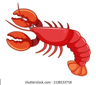A large red lobster illustration
