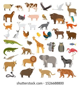 A large set of African, forest and animals and birds from the farm with the cubs. Bear, cow, elephant, lion. flat vector illustration isolated on white background