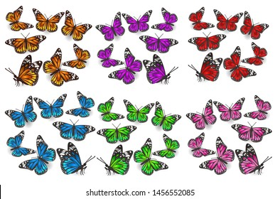 A large set of butterflies in different angles, different colors: green, blue, orange, red, pink, purple. Design elements. Vector graphics.