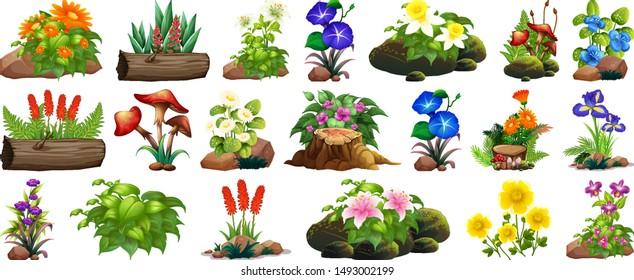 Large set of colorful flowers on rocks and wood illustration