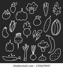 A large set of different vegetables. Cucumber, tomato, corn, eggplant, onion, peas, pepper, broccoli, pumpkin. Healthy organic food. Vegetables in a simple linear style. vector illustration