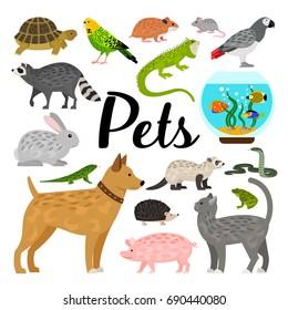 Large set of pets
