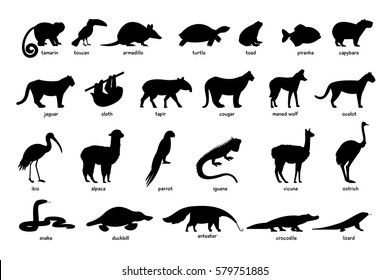 Large set of silhouettes of animals of South America