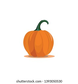 A large sweet pumpkin ready to cook vector color drawing or illustration