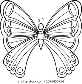 Large tropical butterfly.  Coloring. Vector.