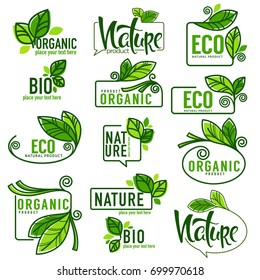 large vector collection of doodle eco, bio, nature and organic leaves and plants emblems, elements,  frames and logo