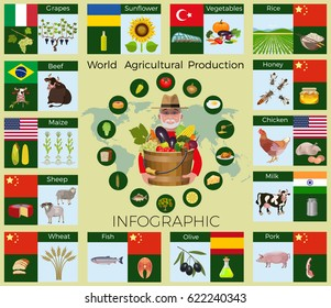 Largest producing countries of agricultural commodities, vector infographic.