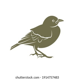 Lark bird logo design vector. Icon Symbol. Template Illustration. Creative design