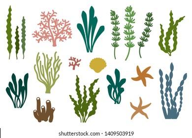 Laser cut template of seaweeds. Coral reef underwater plants vector collection. Aquarium alga set, ocean water plants, sea starfish silhouette. Illustration for wood carving, paper cut, die cut stamp.