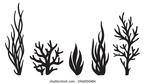Laser cutting template. Seaweeds. Set of coral reef underwater plants vector. Aquarium alga set, ocean water plants silhouette. Paper cutout. Stamp. Stencil.