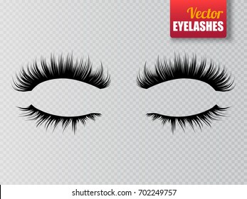 Lashes isolated on transparent background. False eyelashes set. Vector illustration