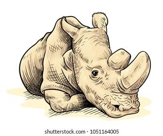 the last male northern white rhino on earth