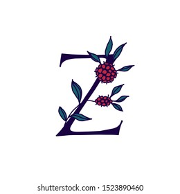 Latin letter Z in flowers and plants. Vector. Letter in decorative elements for inscriptions. Company logo. Poster or monogram.