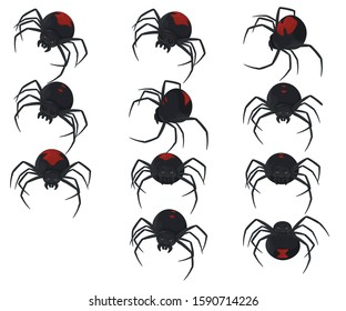 Latrodectus is a broadly distributed genus of spiders with several species that together are referred to as true widows. This group is composed of those often loosely called black widow spider