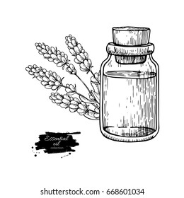 Lavander essential oil bottle and bunch of flowers hand drawn vector illustration. Isolated drawing for Aromatherapy treatment, alternative medicine, beauty and spa, cosmetic ingredient.